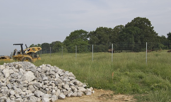 Earth movers and bison share the pasture at Shelby Farms Park