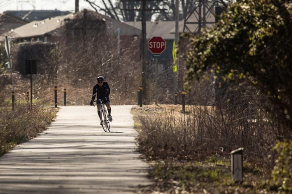 Cyclist on the Greenline