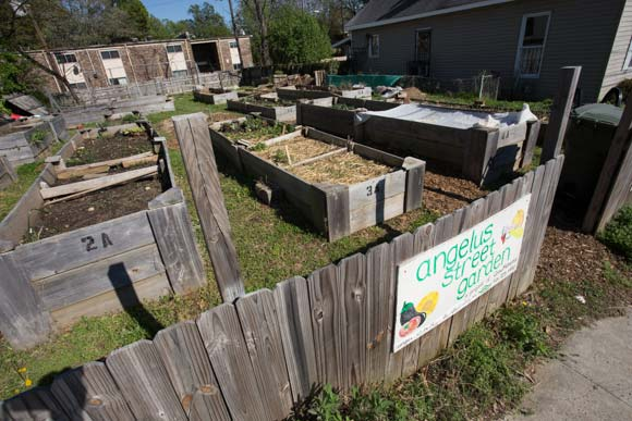 The Angelus Street Garden is a community garden supported by GrowMemphis