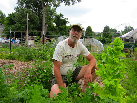 Dennis O'Bryan is the manager at Urban Farms, a farm in Memphis's Binghampton neighborhood that provides produce for Bring It's CSA shares