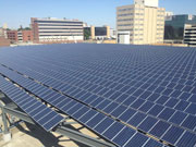 Solar Panel Array Bioworks