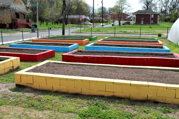 Raised cinder-block beds ready for planting at Knowledge Quest's Green Leaf Farms.