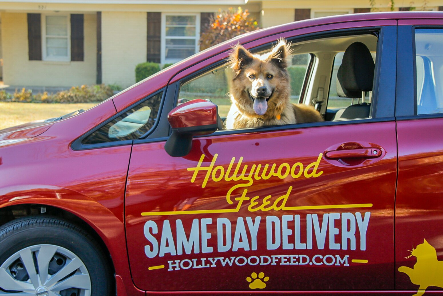 A furry friend helps with Hollywood Feed's same-day deliveries. The regional chain has expanded its same-day service through April 30. (Hollywood Feed)