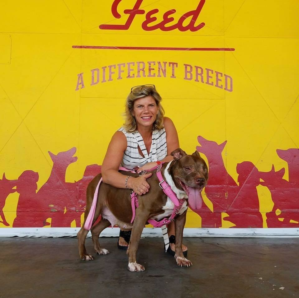 Hollywood Feed owner Jean McGhee. (Hollywood Feed)
