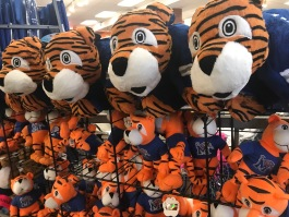 At Tiger Bookstore, Tigers branded merchandise accounts for 40 percent of gross sales. (Cole Bradley)