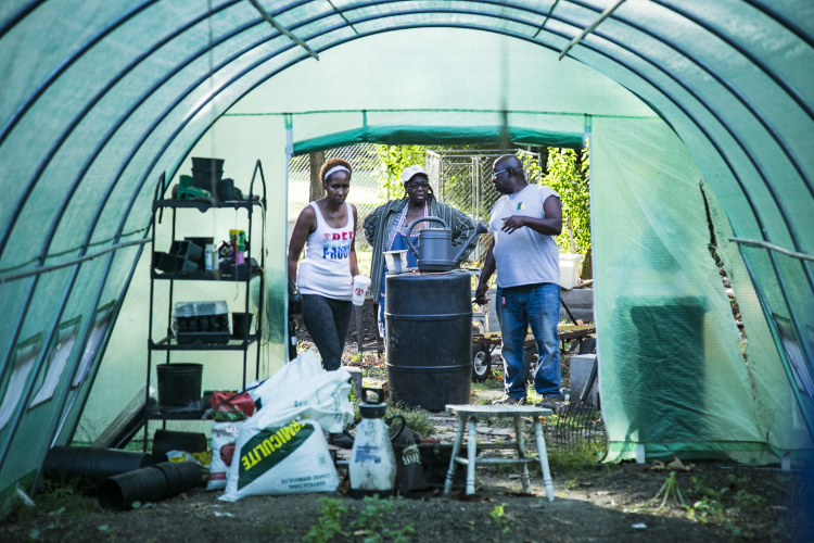 Dana Merriweather (L), Judy Conway (Center), Sidney Johnson discuss plans for the greenhouse located next to Johnson's property on Gracewood St. (Natalie Eddings)