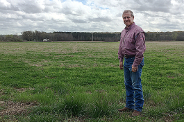 Dr. Bruce Kirksey, Director of Farm and Research for Agricenter International, thinks their is a future in organic farming practices in the Mid-South.