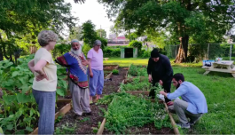 Local leaders from the Muslim community assist at the Thistle & Bee farm.