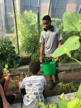 Student entrepreneur Barak Muhammad makes gardening a family affair as he explains how to use a garden claw to his younger brother. (Cole Bradley)