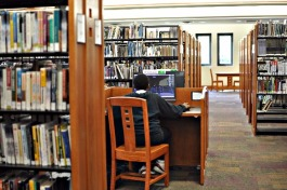 A student studies at the Whitehaven library branch. (Renee Davis Brame)